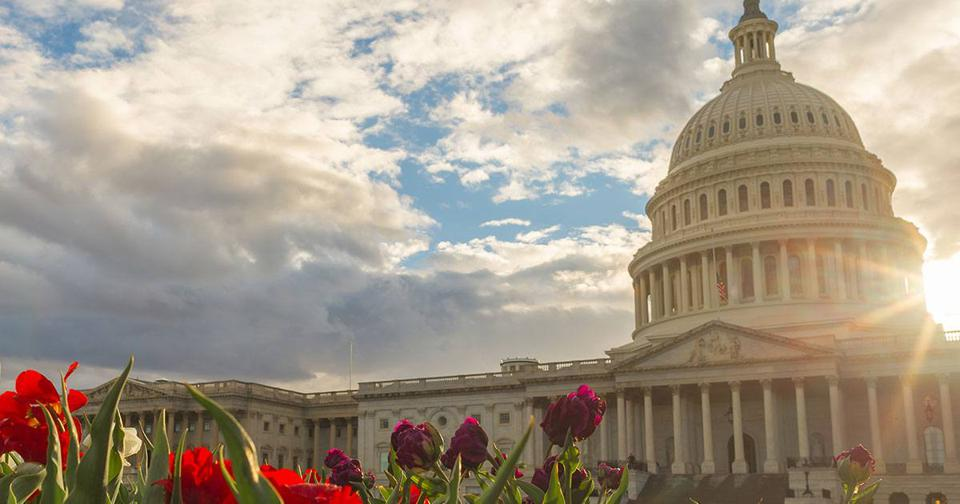 Tax Reform Bill: How Does It Impact You?