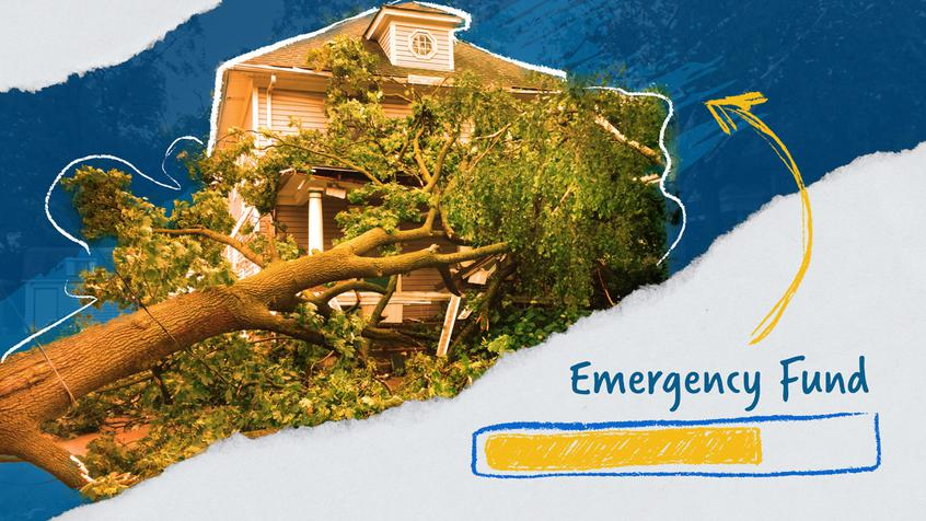 A fallen tree caused damage to a house.